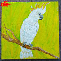 Painting. Snow White Cockatoo - by Olena Light  Click to see full-size image