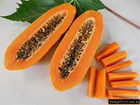 Carica papaya Khak-Dam - Broad Leaf - with Express shipping