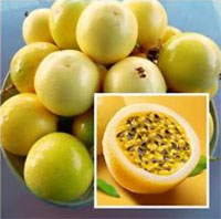 Passifloria Edulis var. flavicarpa - Lilikoi Passion FruitClick to see full-size image
