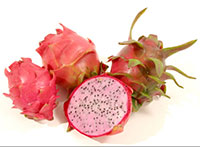 Hylocereus sp. - Delight Pitaya, Dragon Fruit Click to see full-size image