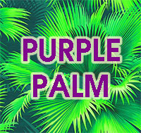 Purple Palm Food - Slow Release Palm BoosterClick to see full-size image