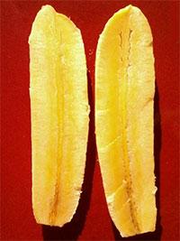 Musa - Banana Kokopo  Click to see full-size image