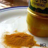 Curcuma longa, Spice Turmeric, Longevity Spice, Indian Saffron, Tumeric  Click to see full-size image