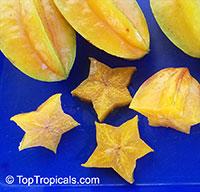 Averrhoa carambola, Carambola, Starfruit, Five-finger, Balimbing  Click to see full-size image