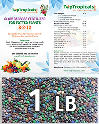 TopTropicals Smart Release Fertilizer, 1 lb  Click to see full-size image