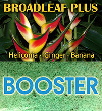 BroadLeaf Plus - Ginger-Heliconia-Banana Booster  Click to see full-size image