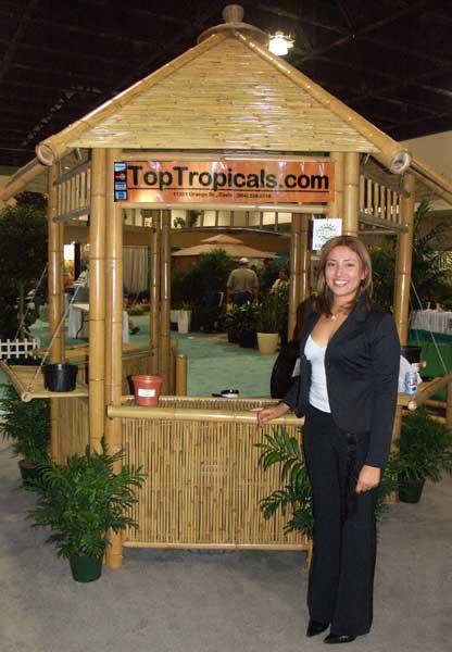 Plant Shows 2005 Toptropicals Com