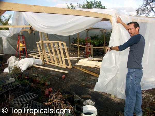Misthouse Propagation And Recovery System Toptropicals Com