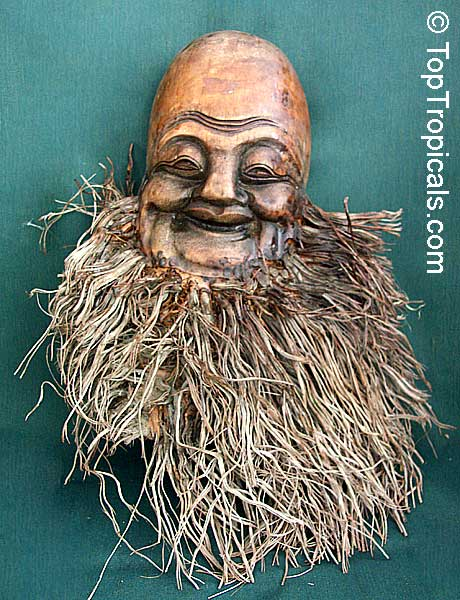 thailand bamboo mask