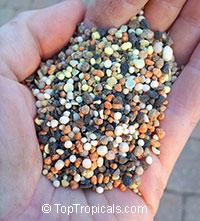 Top Tropicals Slow Release Fertilizer for potted plants, 1 pound