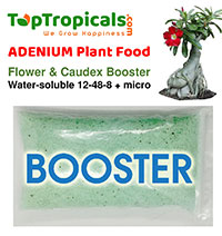 Adenium Plant Food - Flower and Caudex Booster, 1 lb  Click to see full-size image