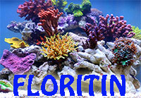 FLORITIN Reef Iron - Reef Aquarium booster  Click to see full-size image
