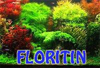 FLORITIN Aqua Iron - aquarium plant booster, 5 mlClick to see full-size image