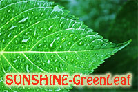 SUNSHINE-GreenLeaf - plant booster  Click to see full-size image