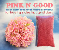 Pink N Good Daily Plant Food - Flower and Fruit BoosterClick to see full-size image