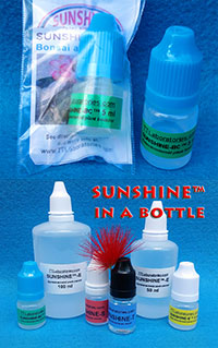 SUNSHINE-BC - Caudex booster