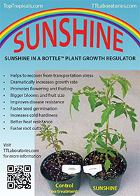 Natural Plant Booster For Tropical Plants Seeds And Cuttings