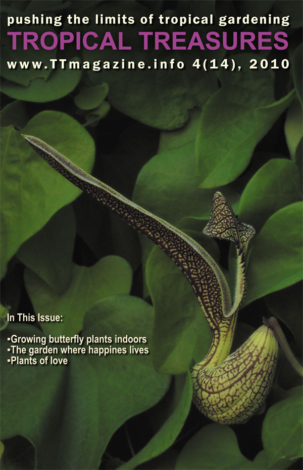 Tropical Treasures Magazine   14 (4 2010)   Hard Copy Click To See