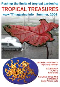Tropical Treasures Magazine - 6 (Summer-2008) - hard copy  Click to see full-size image