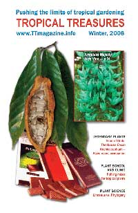Tropical Treasures Magazine - 4 (Winter-2008) - PDF file download   Click to see full-size image